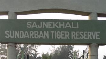 Sundarbans National Park