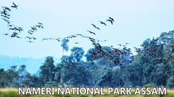 Nameri National Park